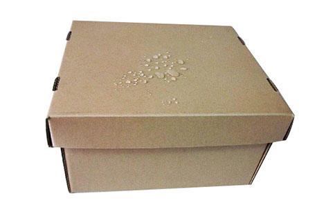 湖州防水纸箱 创造辉煌 无锡威马行包装制造供应