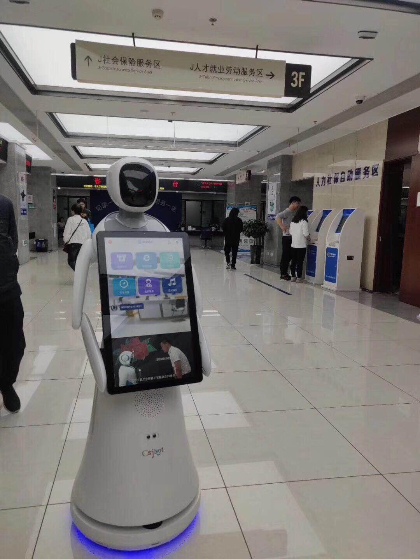 滁州智能机器人服务介绍 和谐共赢 昆山新正源机器人智能科技供应