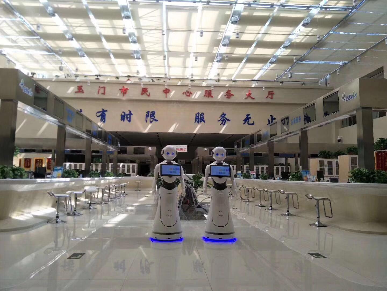 金华公共服务机器人规格齐全 贴心服务 昆山新正源机器人智能科技供应