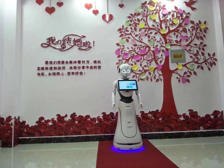 淮安專業公共服務機器人廠家供應 誠信互利 昆山新正源機器人智能科技供應