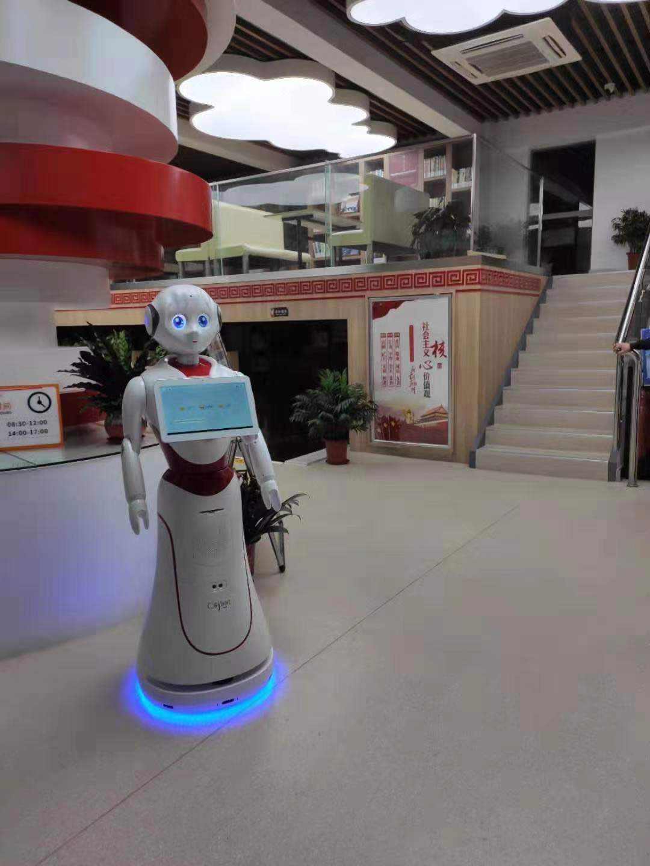 山东优质行政服务机器人销售价格 欢迎来电 昆山新正源机器人智能科技供应