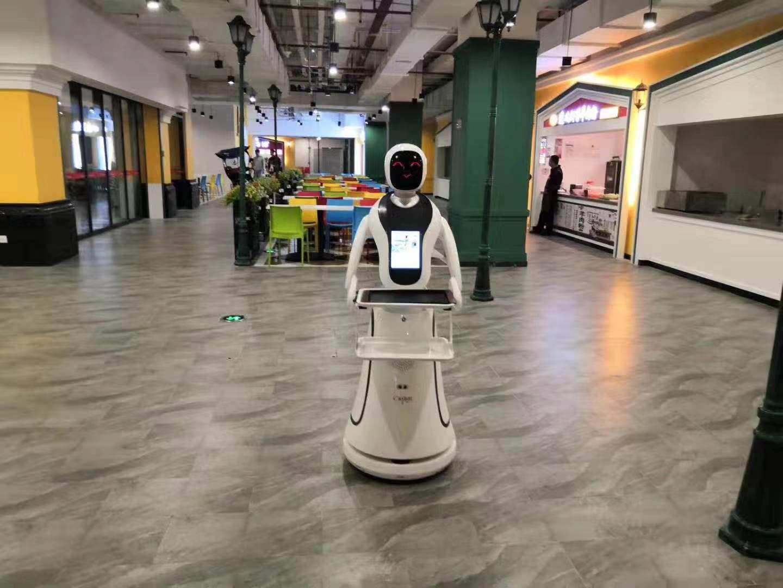 智能迎宾服务机器人哪家好