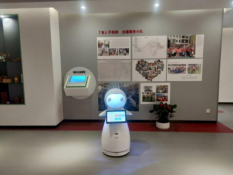 浙江知名智能教育机器人哪家好 创新服务 昆山新正源机器人智能科技供应