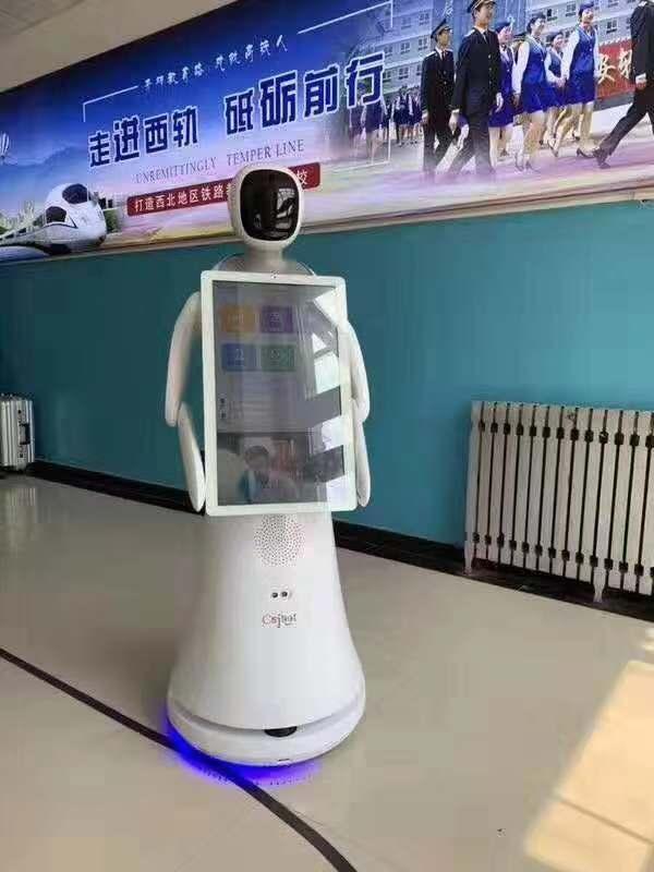 淮安智能机器人的用途和特点 真诚推荐 昆山新正源机器人智能科技供应