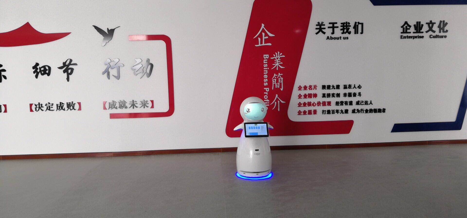 福建公共服务机器人制造厂家 抱诚守真 昆山新正源机器人智能科技供应