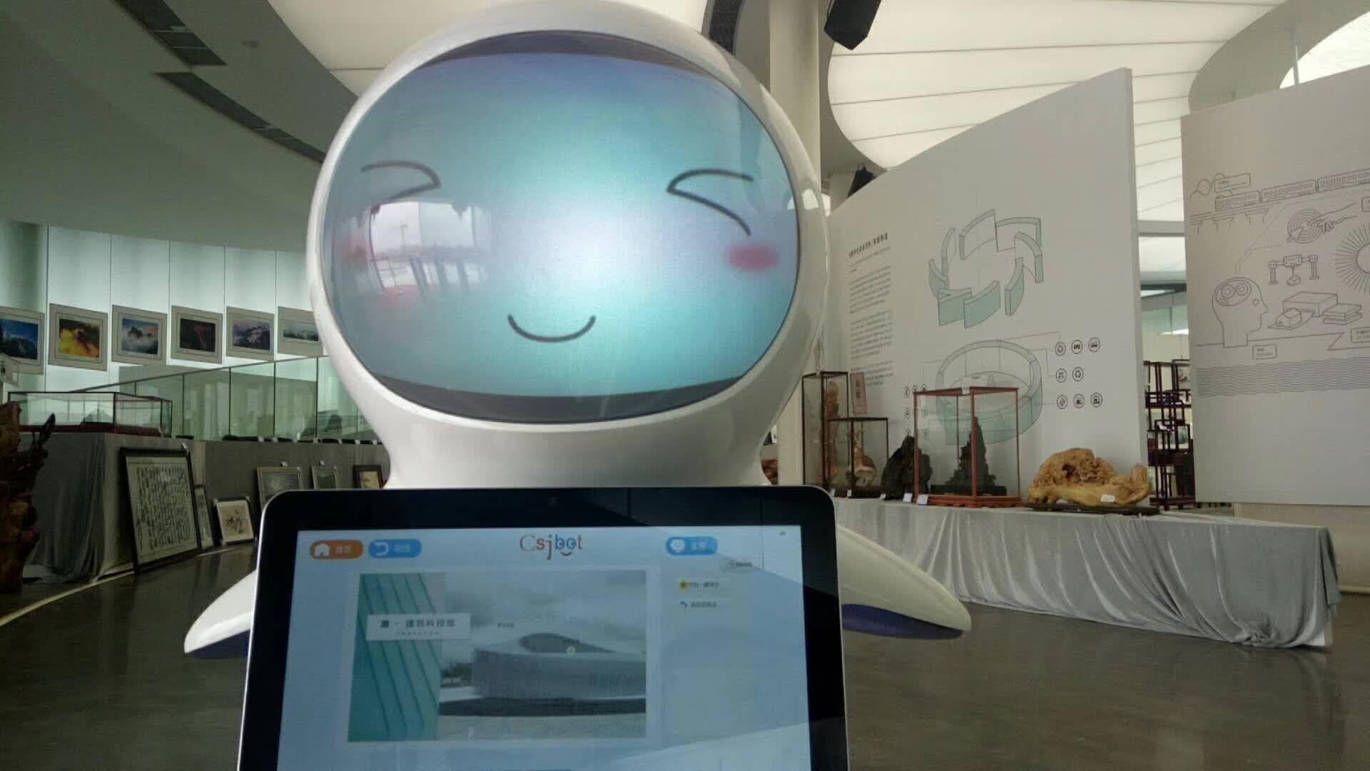 嘉兴知名公共服务机器人多少钱 诚信经营 昆山新正源机器人智能科技供应