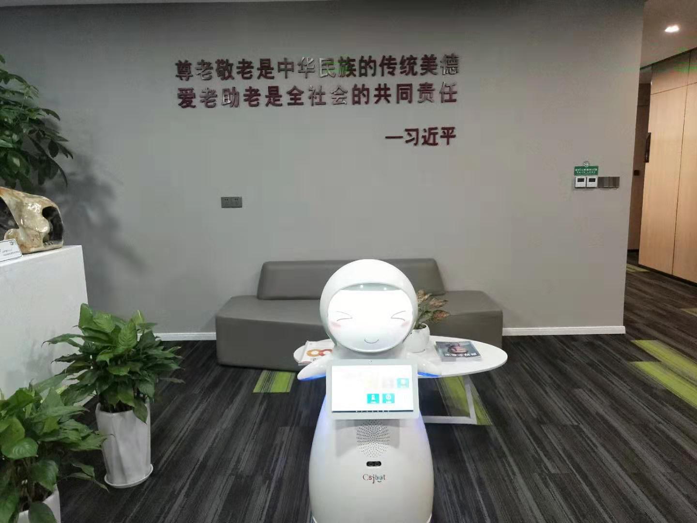 洛阳测温人脸识别一体机型号如何选择 欢迎咨询 昆山新正源机器人智能科技供应