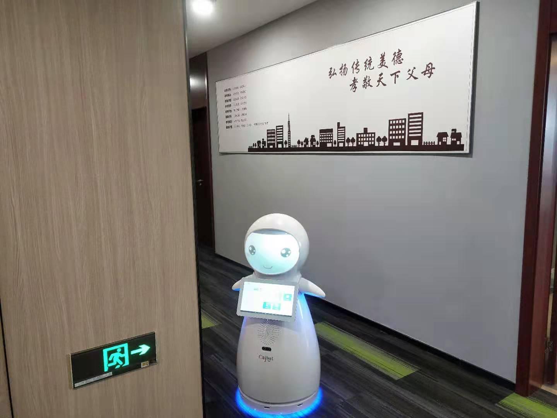 无锡红外测温机器人哪种好 诚信服务 昆山新正源机器人智能科技供应