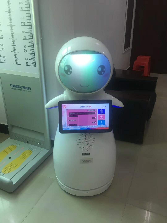 直销迎宾接待机器人价格 贴心服务 昆山新正源机器人智能科技供应