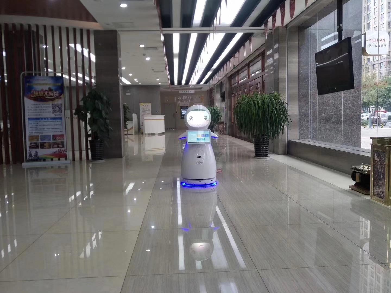 惠州迎宾接待机器人多少钱 推荐咨询 昆山新正源机器人智能科技供应
