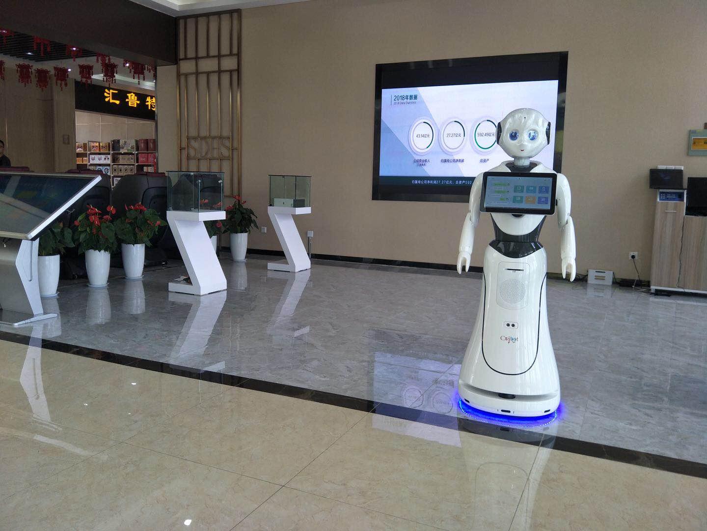 天津智能景区讲解机器人上门安装,景区讲解机器人