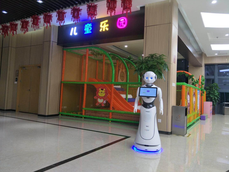连云港智能机器人哪家专业 客户至上 昆山新正源机器人智能科技供应