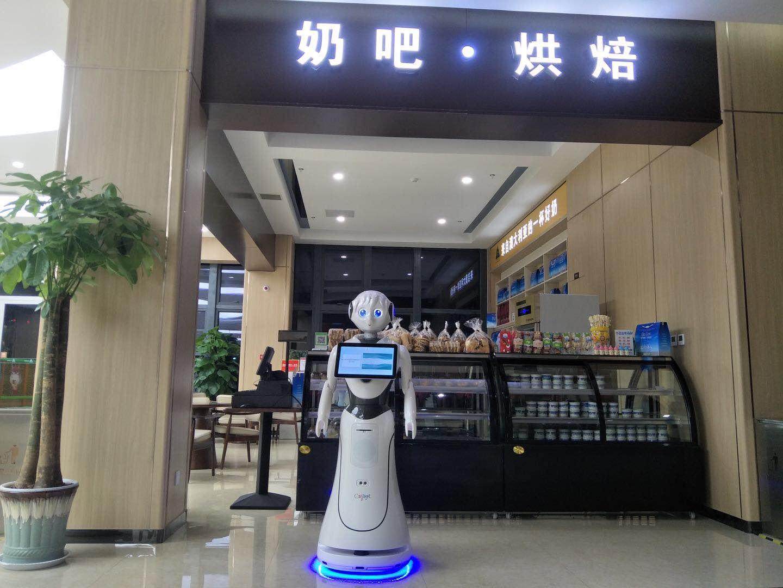 上海智能景区讲解机器人销售厂家,景区讲解机器人