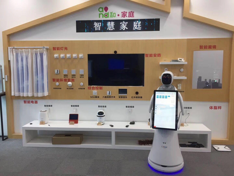 泉州专业智能机器人 推荐咨询 昆山新正源机器人智能科技供应