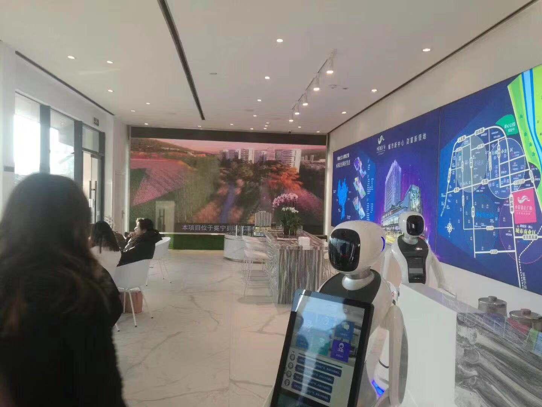 江苏公共服务机器人销售价格 来电咨询 昆山新正源机器人智能科技供应
