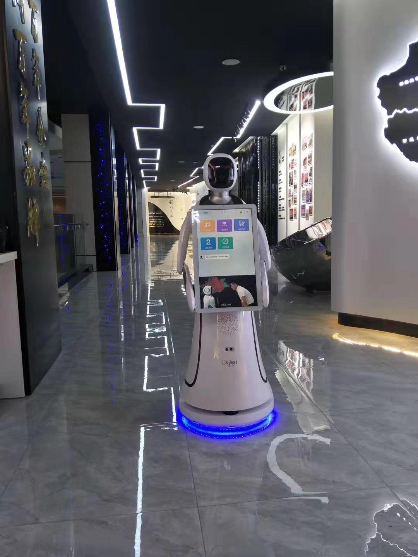 开封党建导览机器人生产基地 真诚推荐 昆山新正源机器人智能科技供应