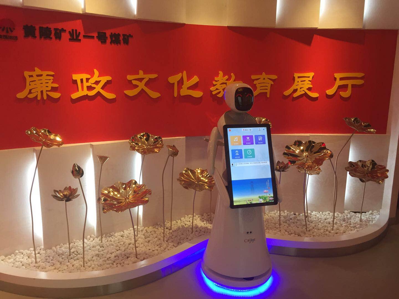 河北专业行政服务机器人上门安装 来电咨询 昆山新正源机器人智能科技供应