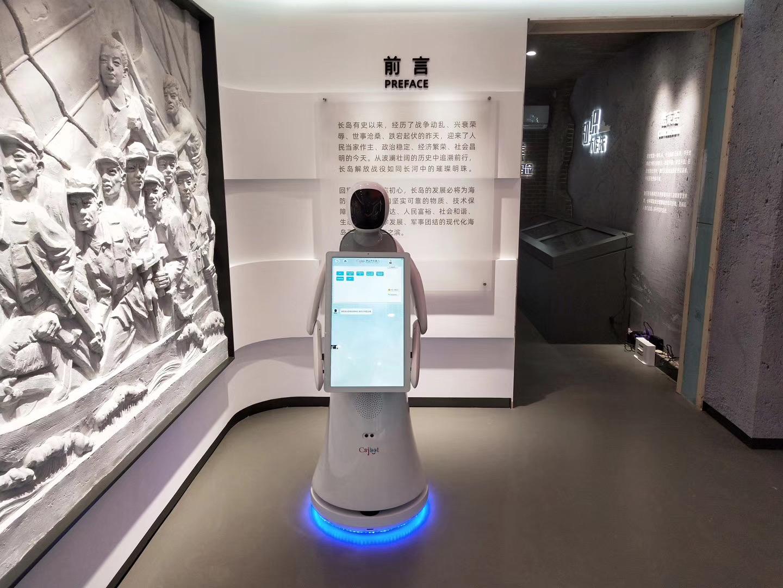 淮安红外测温机器人哪个牌子好 诚信为本 昆山新正源机器人智能科技供应