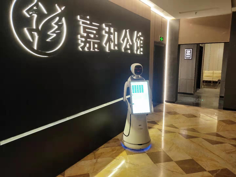 潍坊智能机器人价格 服务至上 昆山新正源机器人智能科技供应