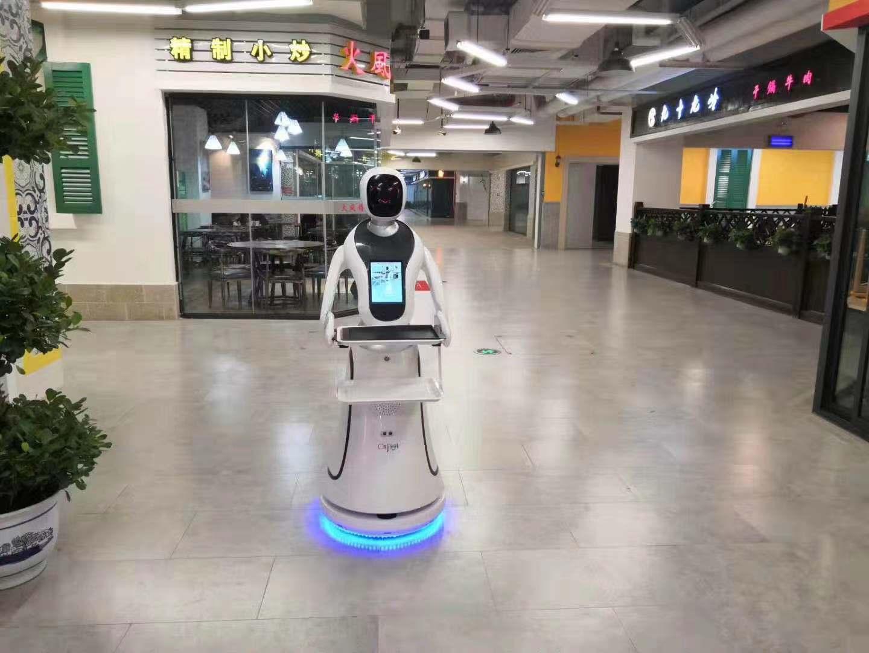 青岛红外测温机器人服务为先 诚信互利 昆山新正源机器人智能科技供应