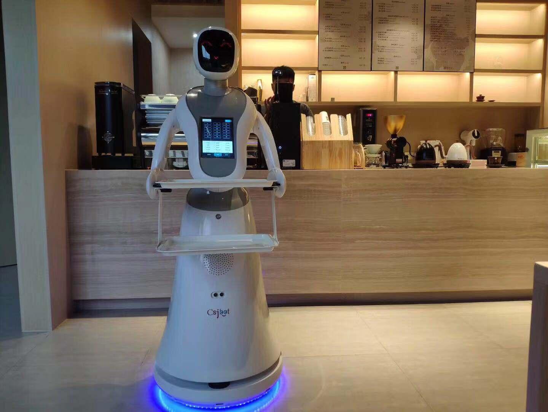 重庆新型红外测温机器人 信息推荐 昆山新正源机器人智能科技供应