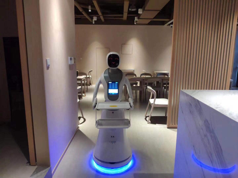 合肥红外测温机器人现货 有口皆碑 昆山新正源机器人智能科技供应