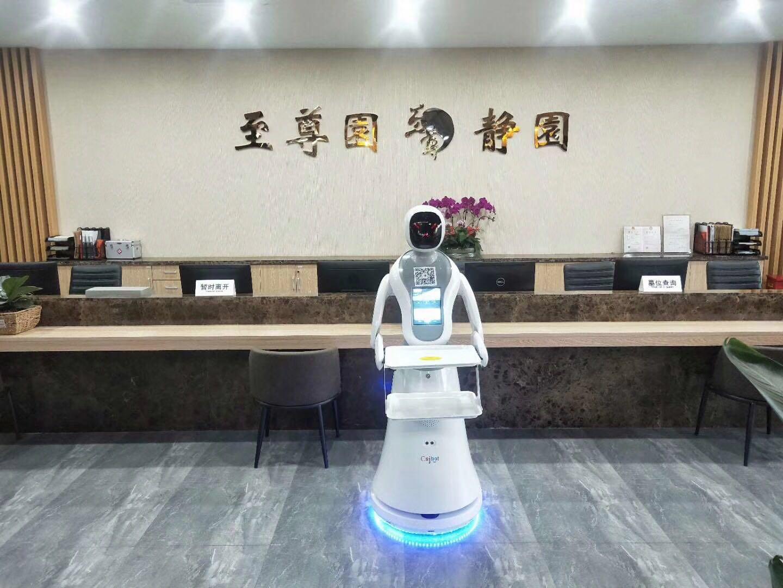 上海优质送餐机器人销售电话 服务为先 昆山新正源机器人智能科技供应