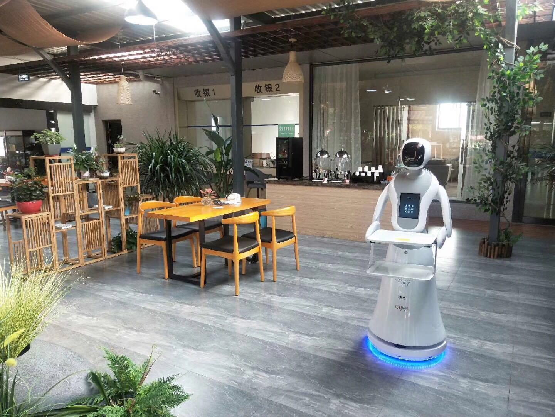 漳州送餐机器人优质商家 服务为先 昆山新正源机器人智能科技供应
