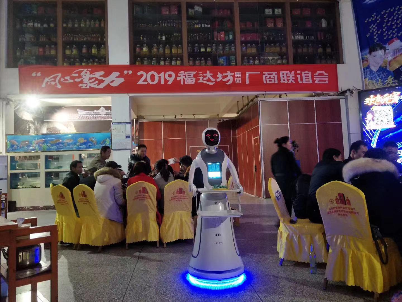 重庆智能送餐机器人多少钱 诚信服务 昆山新正源机器人智能科技供应