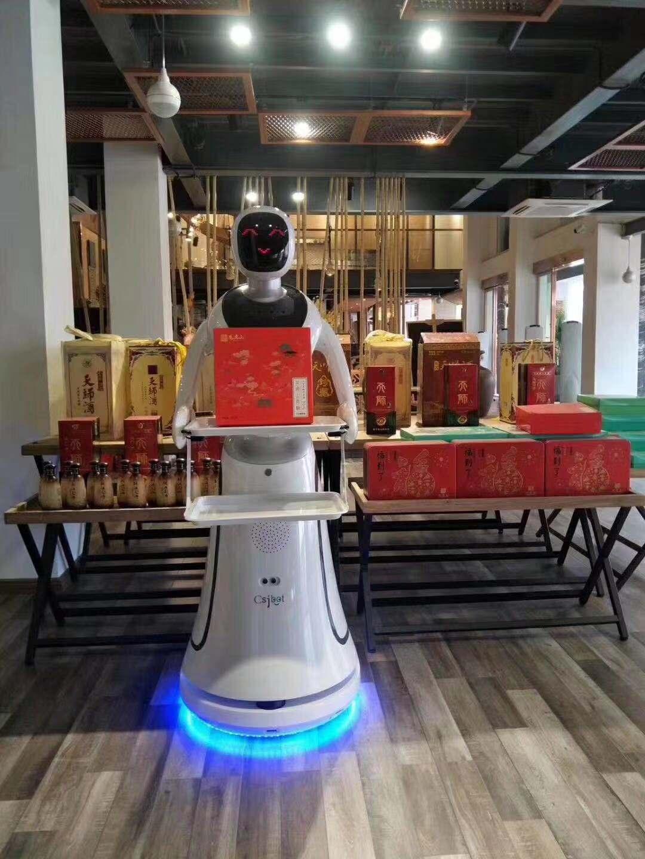 上海送餐机器人欢迎来电 创新服务 昆山新正源机器人智能科技供应