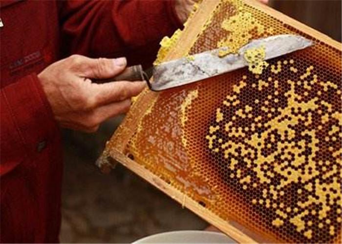 昆明农家蜂蜜价格 诚信经营 云南雅楠生物科技供应