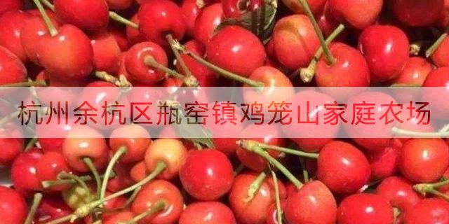 临安团购采摘樱桃方便 服务至上「鸡笼山家庭农场供应」