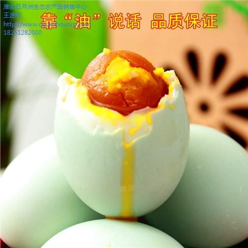 泰州草鸡蛋生态养殖基地