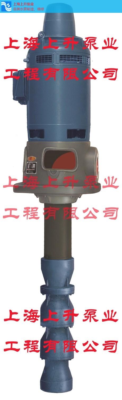 深圳批发长轴深井泵生产商,长轴深井泵