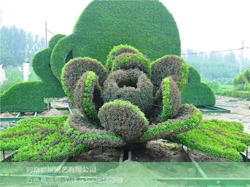 衡水户外植物绿雕植物墙,植物绿雕