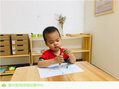 宝安区专业幼师资格证服务为先,幼师资格证