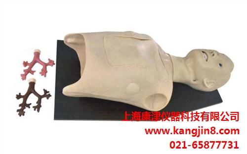 提供上海支气管内窥镜模型排名 康津供