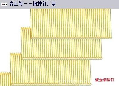 云南优质钢排钉型号 隆尧县北楼乡青正剑制钉供应