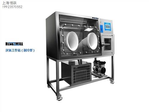 提供南京厌氧工作站生产厂家价格恒跃供