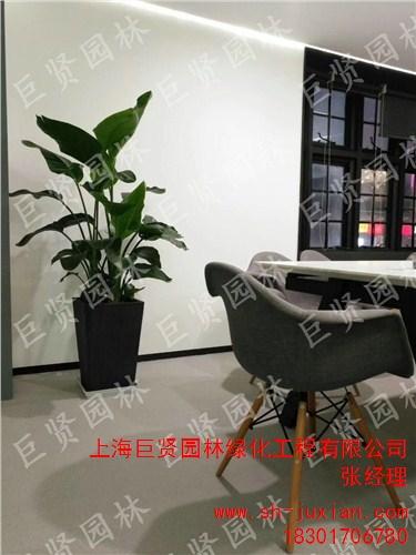 上海巨贤园林绿化工程有限公司