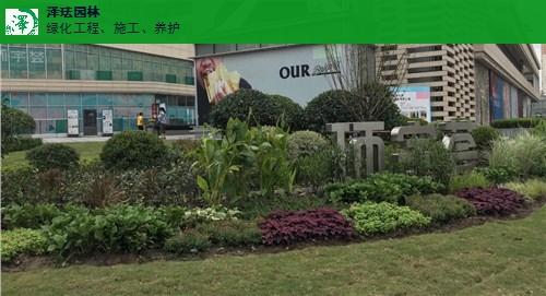 青浦区官方屋顶绿化哪家专业,屋顶绿化
