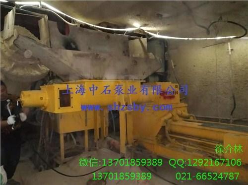 钻井废弃物输送泵 采油污泥输送泵 含油污泥输送泵-上海中石
