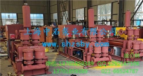 高压隔膜料浆泵 液压隔膜活塞泵泥浆泵 液压隔膜活塞矿浆泵-上海中石