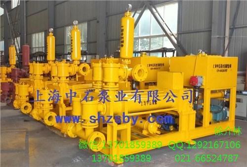 压滤机节能活塞泵 压滤机节能污泥泵 压滤机节能泥浆泵-上海中石