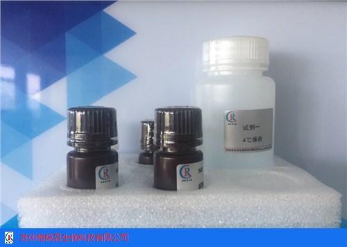 山東知名半乳糖苷酶試劑盒 蘇州格銳思生物科技供應