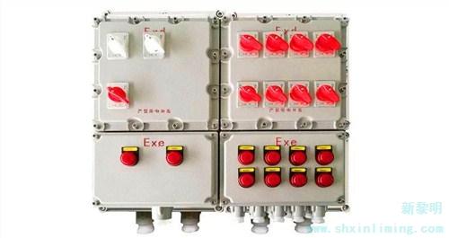 Led防爆灯公司|供应新黎明防爆划算的防爆配电箱  新黎明供