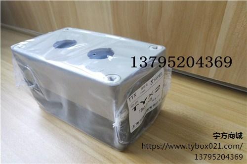 提供上海上海天逸TYX2按钮盒开关厂家报价宇方供