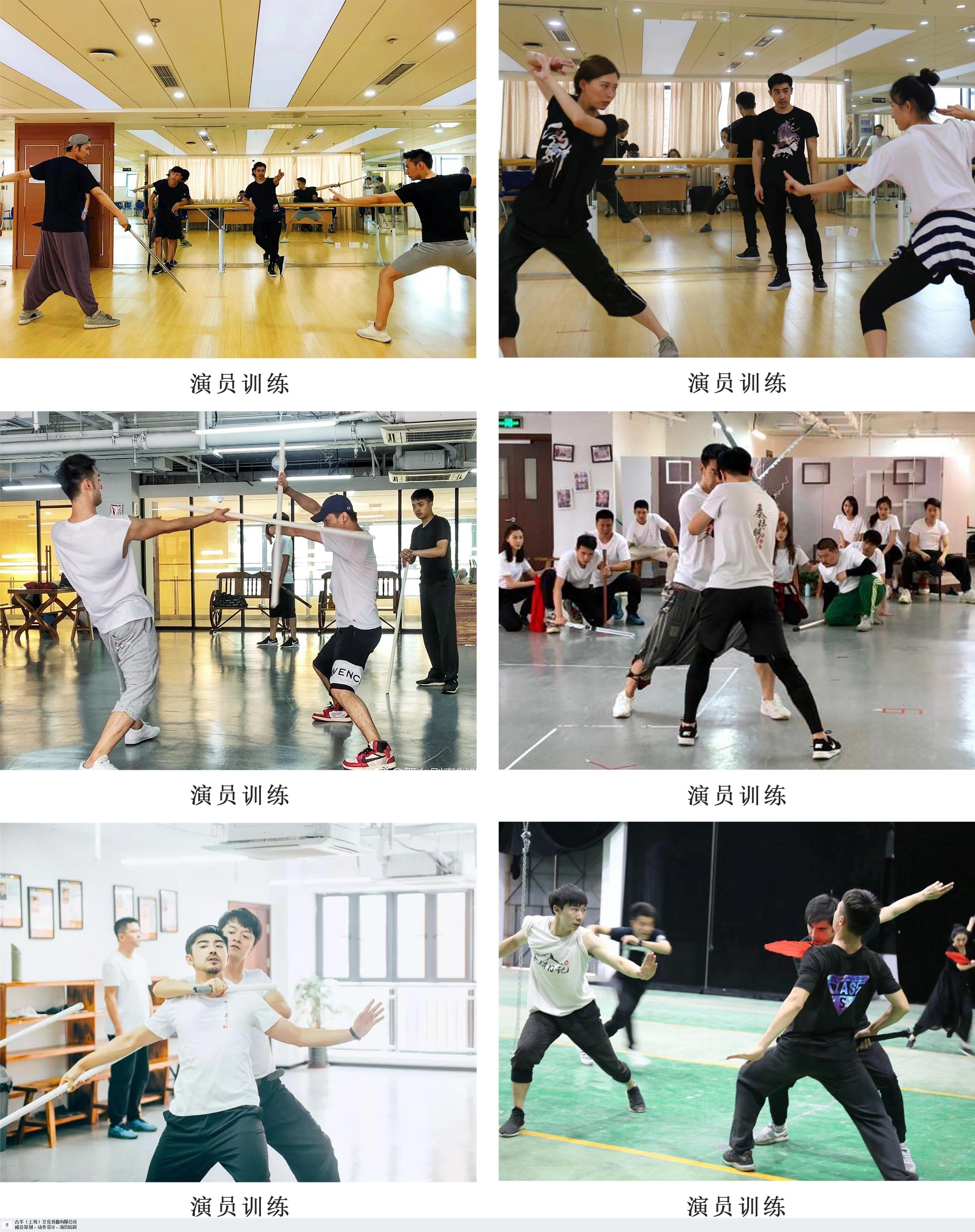 湖北优质动作威亚设计推荐 和谐共赢「上海古羊文化传播供应」