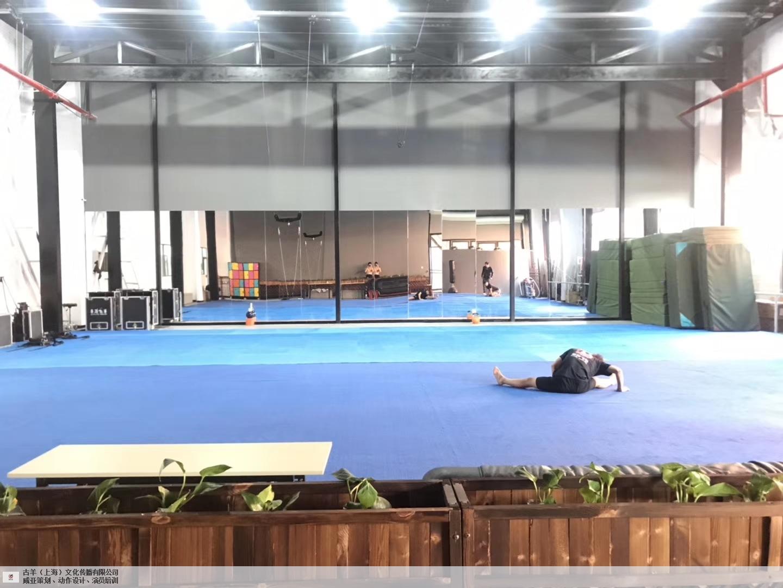 上海知名威亚表演训练行业专家在线为您服务,威亚表演训练