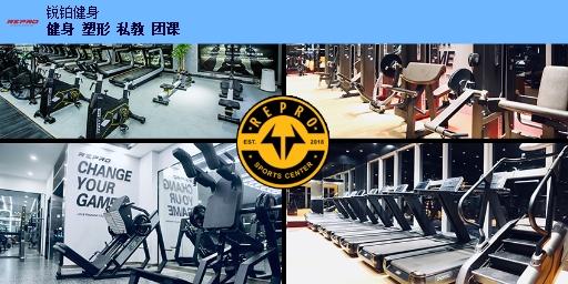 高新区女生健身培训 欢迎来电「锐铂健身馆供应」